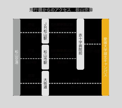 ⾶⾏機からのアクセス 松⼭空港